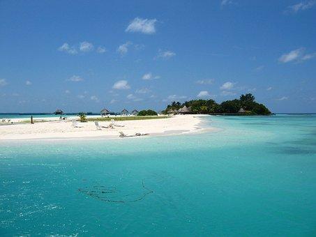 Sea, Maldives, Holiday, Beach, North Male Atoll, Palms
