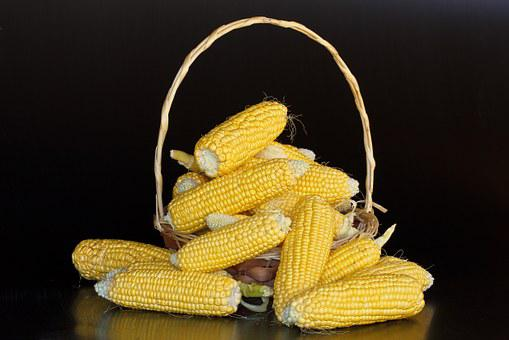 Maize, Mealies, Corn, Sweetcorn, Yellow, Starch