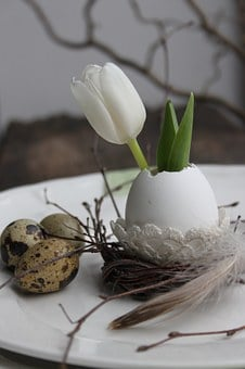 Tulip, Egg, Easter Decoration, Quail Eggs, Spring