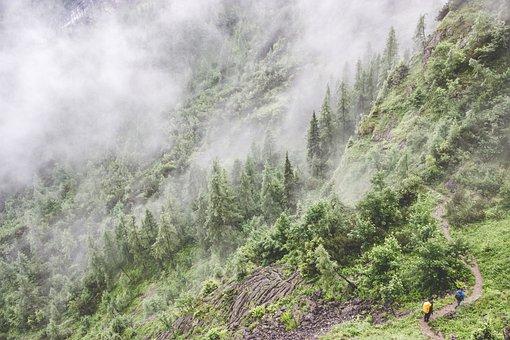 Adventure, Foggy, Grass, Hiking, Landscape, Mountain
