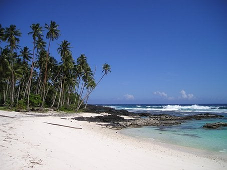 Palm Trees, Beach, Beautiful Beach, Sand Beach, Samoa