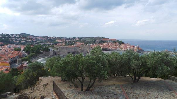 Collioure, Landscape, South, Olive Trees, Clouds