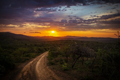 Dirt Road, Mountains, Sunset, Trees, Forest, Jungle