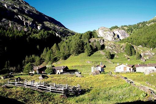 The Monal, Savoie, Saint Foy Tarentaise