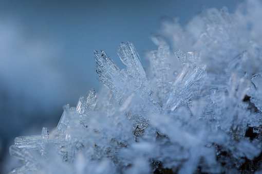 Hoarfrost, Winter, Snow, Cold, Transition, Frozen