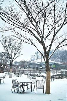 Rest Areas, Winter, Wood, Snow, Yearning, Landscape