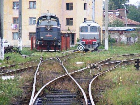 Tracks, Railroad, Transportation, Train, Locomotive