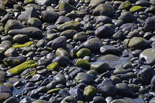 Stones, Moss, Water, Wet, Nature, Sea, Black Green