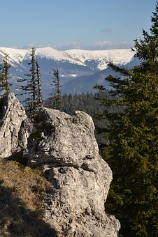 Views, Mountains, Forest, Rock, Slovakia, Nature