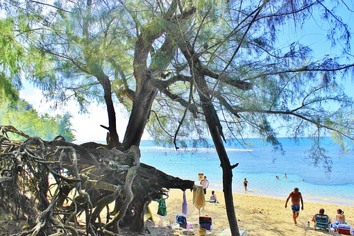 Hanalei, Kauai, Hawaii, Beach, Sand, Vacation, Holidays