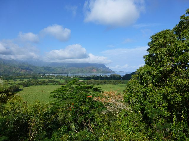 Kauai, Hanalei, Hawaii, Farm, Land, Countryside