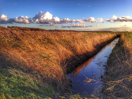 Marsh, Cuxhaven, Romance, Sunset, Reed, Water