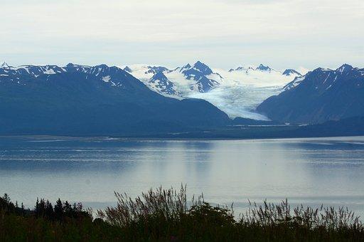 Homer, Alaska, Blue, Nature, Wild, Bay, Water, Glacier