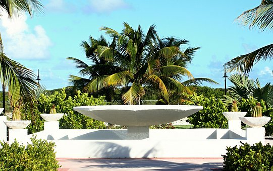 Caribbean, Sea, Beach, Palm Trees, Sun, Vacations