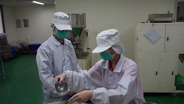 Food Factories, Food, Raw Material, Packaging, Conveyor