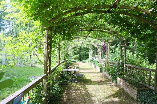 Pergola, Shady Walk, Garden Walk, Arbor, Path, Leafy