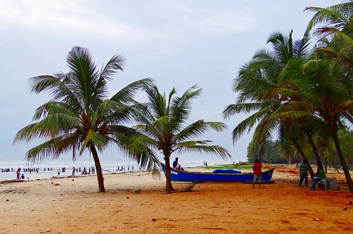 Malpe Beach, Arabian Sea, Palm Trees, Sand Beach