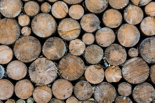 Wood, Round, Spar, Brown, Winter, Cold, Stacked, Stack