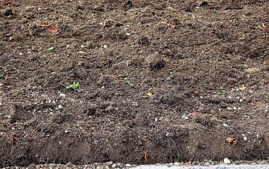 Humus, Ground, Arable, Autumn, Fallow