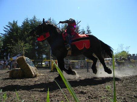 Horse, Festival, Medieval, Fairy Festival, Jousting