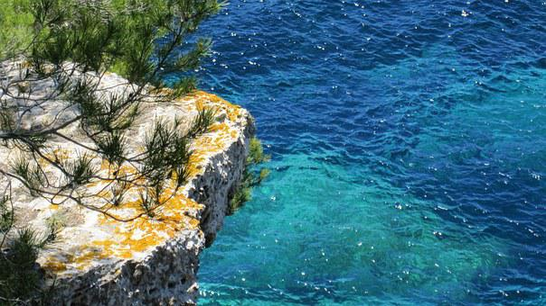 Sea, Mediterranean, Water, Coast, Pine, Holiday, Nature