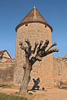 Avallon, Yonne, Burgundy, Tower, Rampart, Tree