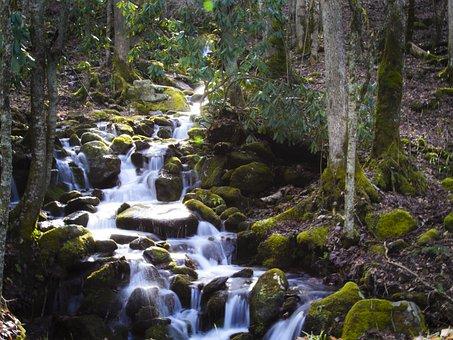 Smokey, Mountains, North Carolina, River, Creek