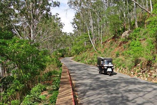 Hill Road, Auto-rickshaw, Nandi Hills, Forest