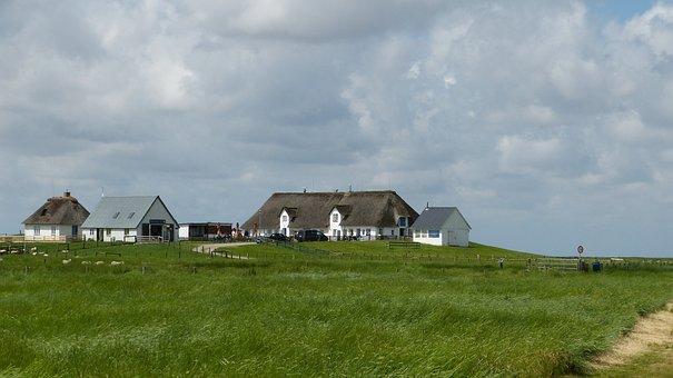Hamburger Hallig, North Sea, Wadden Sea, Sky, Coast