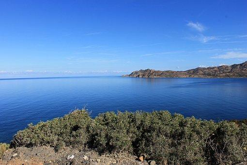 Corsican, Maquis, Island, Island Of Beauty, Landscape