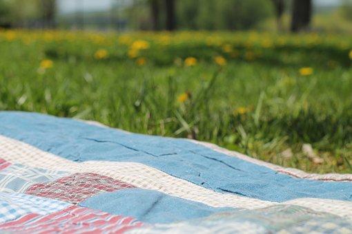 Picnic, Blanket, Summer, Park, Nature, Lifestyle
