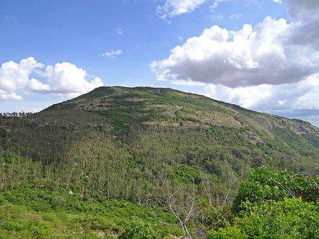 Nandi Hills, Forest, Deccan Plateau, Karnataka, India