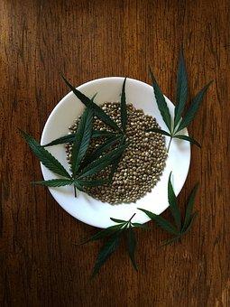 Hemp Seeds, Sativa, Food, Hemp, Protein, Seeds, Natural