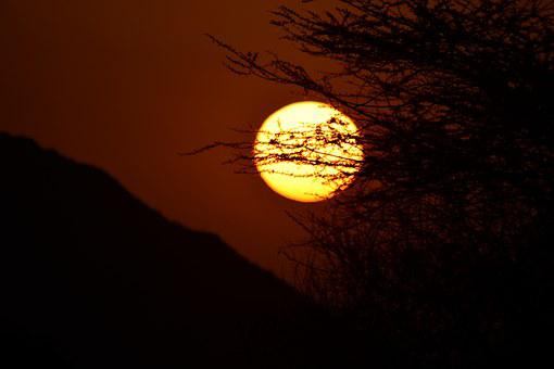 Sunset, East, Sun, Acacia, Africa, Kenya, National Park