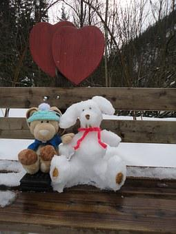 Hare, Schneehase, Pauli, Fig, Winter, Love, Wintry