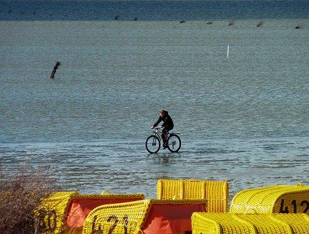 Watts, North Sea, Cycle, Holiday, Relaxation, Bike