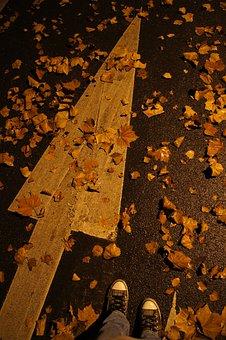 Arrow, Shoes, Autumn, Road, Night, Leaf, Towards