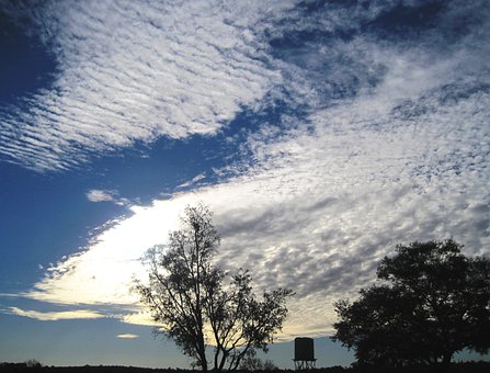 Sky, Blue, Clouds, Mass, White, Fleecy, Dainty, Stratus