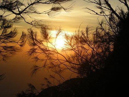 Sunrise, Nature, Shadows, Silhouette