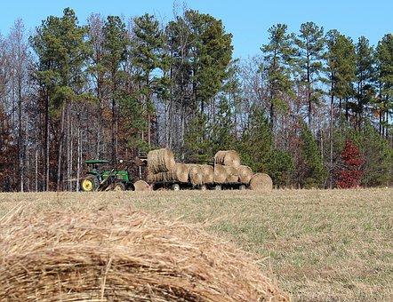 Farming, Making Hay, Hay Wagon, Tractor, Hay Field