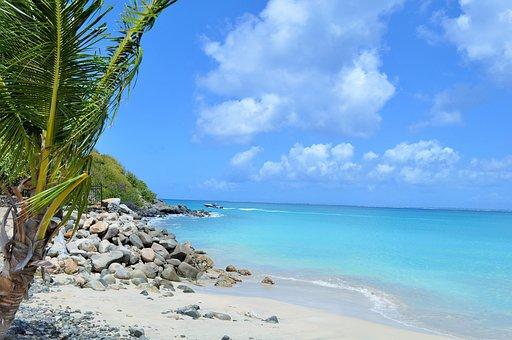 Island, Paradise, Sea, Holiday, Tropical, Caribbean