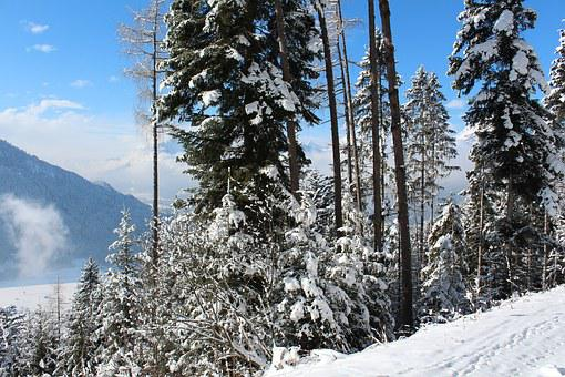 Snow, Winter Sports, Mountains, Austria, Alps, Alpbach