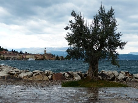 Salo, City, Garda, West Bank, Brescia, Lombardy, Italy