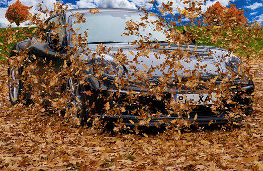 Autumn, Leaves, Wind, Fly, Fall Foliage, Fall Color