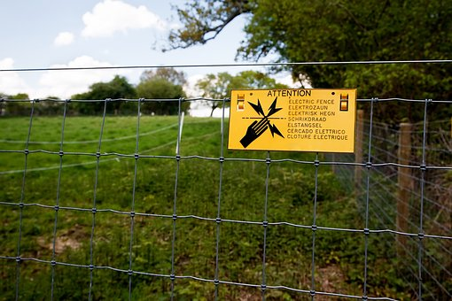 Electric Fence, Field, Grass, Electric, Fence, Wire