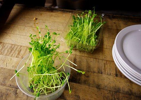 Food, Food Prep, Kitchen, Restaurant, Sprouts