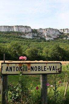 Midi-pyrenees, Antonin Noble Val, France, Flower