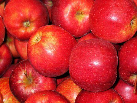 Chalkboard Apple, Apple, Royal Gala, Bearing Apple