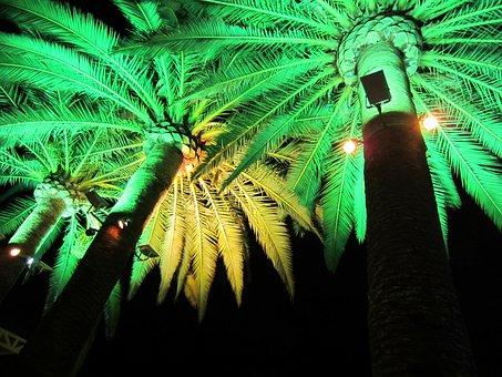 Green Light, Electric Lighting, Illumination, Party
