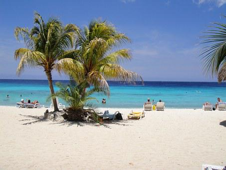 Beautiful Beach, Palm Trees, Curacao, Antilles